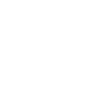White NCSciFest logo